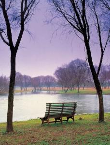 湖边草地上的椅子图片