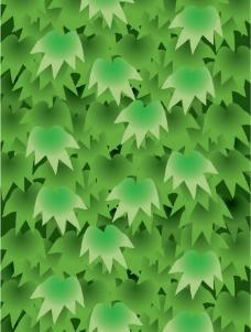 植物叶子矢量图图片