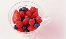 草莓 野霉图片